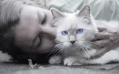 Create a Plan to Ensure Your Pet's Care
