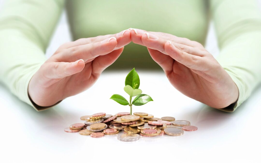 A green sprout grows out of a small pile of coins as someone's hands shelters the sprout.